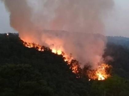 VIDEO: Pēc auto degšanas Turcijas WRC rallijā izceļas plašs meža ugunsgrēks