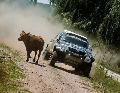 Lietuvietis ar 150 km/h lielu ātrumu notriec govi, Bolīvijas sportistam sadeg bagijs